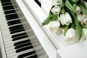 Настройка пианино,  на профессиональном автотюнинге, профессионало